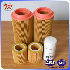 China Supplier Compressor Air Filter Element Atlas 1613900100 pictures & photos