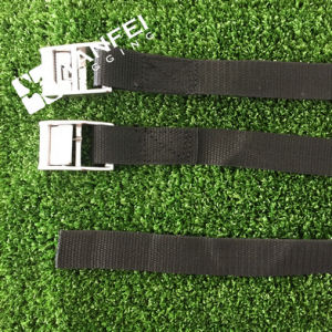 25mm/500kg Cam Buckle Tie Down pictures & photos