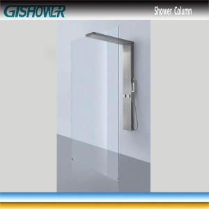 Stainless Steel Shower Panel and Shower Screen Combo (LNH20-03) pictures & photos