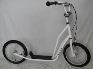 """16"""" Steel Frame Kick Scooter (H1616) pictures & photos"""
