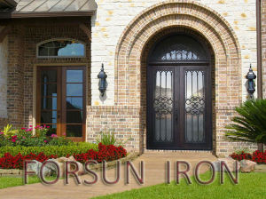 Elegant Wrought Iron Door with Arched Transom for Villa pictures & photos