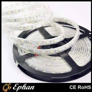 Economy Christmas LED Decoration Strip Light (EPSEC35-60-W)