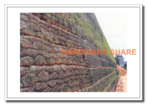 Basalt Fiber Mesh Geogrid 60kn pictures & photos