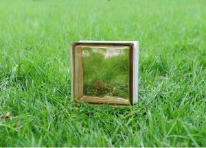 Beautiful Brown Cloudy Glass Brick (JINBO) pictures & photos