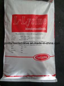 Lysine Amino Acids pictures & photos