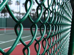 Safety Mesh Fence/Chain Link Fence pictures & photos