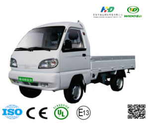 Green Power Light Small Electric Truck
