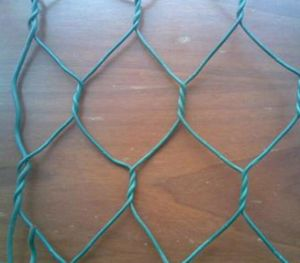 Green PVC Hexagonal Wire Mesh for Cages pictures & photos
