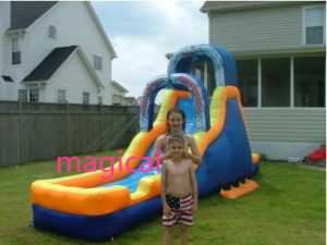 Outdoor Family Used Inflatable Water Slide (MIC-909) pictures & photos