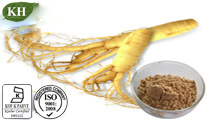 100% Natural Ginseng Extract: Ginsenosides 0.4%, 20%, 27%, 30% by HPLC; Ginsenosides 5%, 8%, 10%, 20%, 27%, 30%, 80%, 85% by UV; pictures & photos