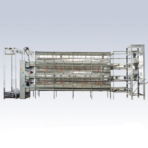 Chicken Cage Poultry Farm Equipment pictures & photos