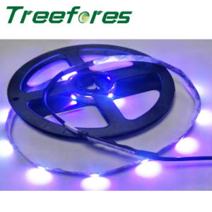 LED Pixel Strips 34LED/M 5050 RGB DMX Light pictures & photos