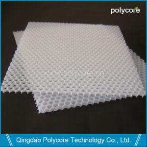 Light Weight Waterproof PP Honeycomb Core pictures & photos