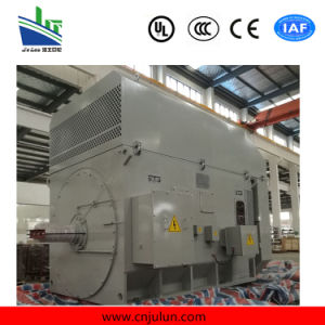 Yr High Voltage Motor. Winding Type High Voltage Motor. Slip Ring Motor Yr4501-8-315kw pictures & photos