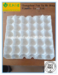 Pulp Tray Mould for Eggs and Tools pictures & photos