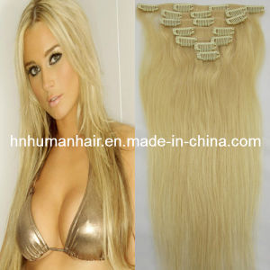 Human Hair Extensions (HN-C-083)