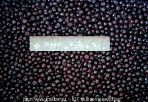 IQF Blueberries Wild or Cultivated