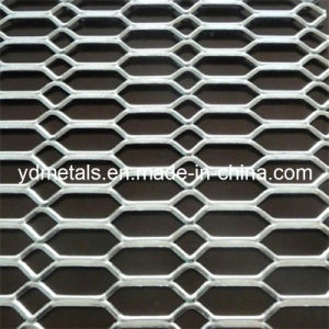 Expanded Metal Sheet pictures & photos