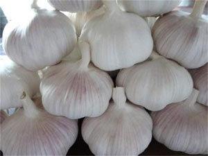 2015 Chinese New Fresh Normal White Jinxiang Garlic (4.5-6.0cm)