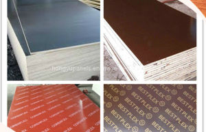 Marine Plywood for Building Material