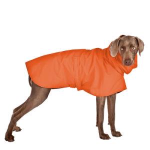 Big Dog Coat Pet Jacket pictures & photos