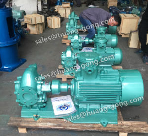 Lubrication Oil Gear Pump with Safety Valve pictures & photos