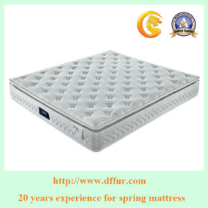 Sleep Well Hotel Compress Rolled Pocket Spring Mattress pictures & photos