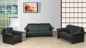 Leather Sofa (E212)