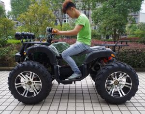 "Manufacturer New Upgraded 14"" Tyre 1500W Electric ATV (JY-ES020B) pictures & photos"