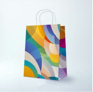 Customized White Kraft Paper Gift Shopping Bag with Twisted Handle pictures & photos