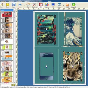 Software for Making Cellphone Case Skin/Sticker pictures & photos