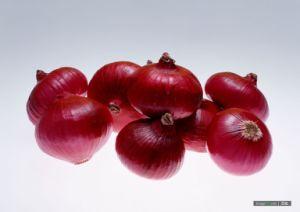 Onion (15)
