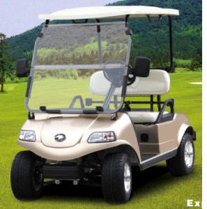 Electric Golf Car/Cart/Buggy (DEL3022G, 2-Seater) pictures & photos