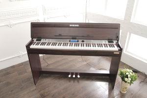 88-Keys Digital Piano (8808)