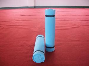 Outdoor Mat, EVA Foam Mat, Yoga Mat, EVA Mat pictures & photos