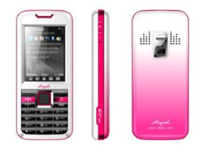 Anycool D528 Dual SIM Card Dual Standby Mobile Phone