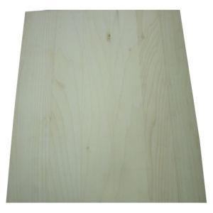 Yellow Poplar Solid Edge-Glued Panel