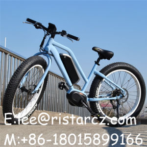 Cheap Price Middle Motor Ebike From China pictures & photos