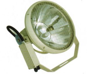 1000W/2000W Floodlights, IP66 Flood Lights pictures & photos