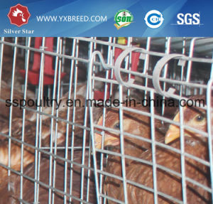 2017 Hot Sale Layer Cage with High Quality pictures & photos