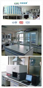 We Can Provide En71/Astmf963/Cpsia/ Phthalates/Lead/FDA/LFGB, etc Product Quality Testing Service pictures & photos