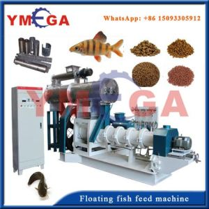 China Machinery with Good Quality Wet Type Fish Feed Machine pictures & photos