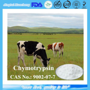 ISO Factory Supply Best Trypsin Chymotrypsin CAS No.: 9002-07-7 pictures & photos