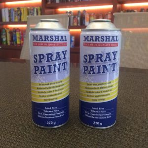 Wholesale Empty Aerosol Can with Cmyk Printing
