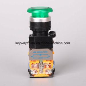 Keyway 6-380V Illuminated-Mushroom Type Push Button Switch pictures & photos