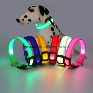 LED Dog Collar to Keep Your Dog Safe Money Back Guarantee High Quality Flashing Dog Collar with Extra Batteries pictures & photos