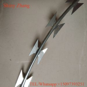 Grade Razor Barbed Wire Mesh Fence pictures & photos