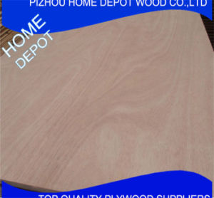 Commercial Best Quality 1220*2440mm Ordinary Plywood pictures & photos