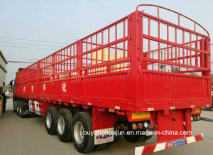 13 M Van Type Truck Trailer pictures & photos