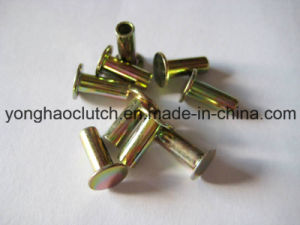 Semi Hollow Rivets 7-6 pictures & photos